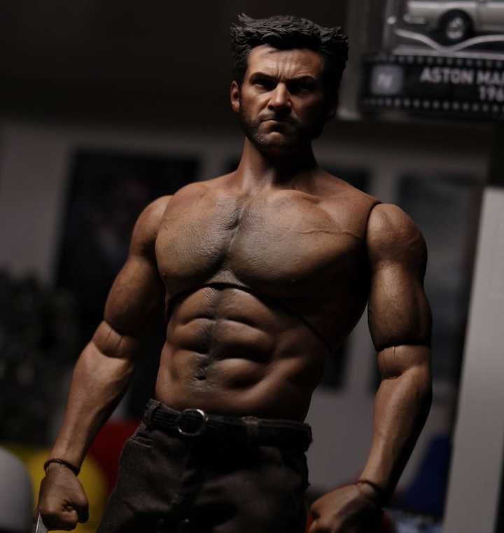 Hot Toys Wolverine with World Box AT012 Body